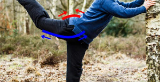 flexibility shortening